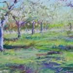 Apple Trees by Michael Pintar